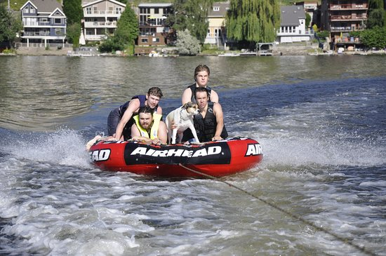 Penticton, Kanada: Dog days of summer !