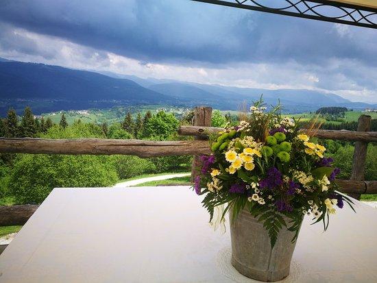 Cogollo del Cengio, Italy: Agriturismo Malga Roccolo