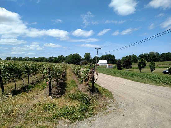 South Shore Wine Company: Outside views
