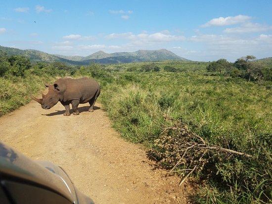 iSimangaliso Wetland Park, South Africa: 20180608_121029_large.jpg