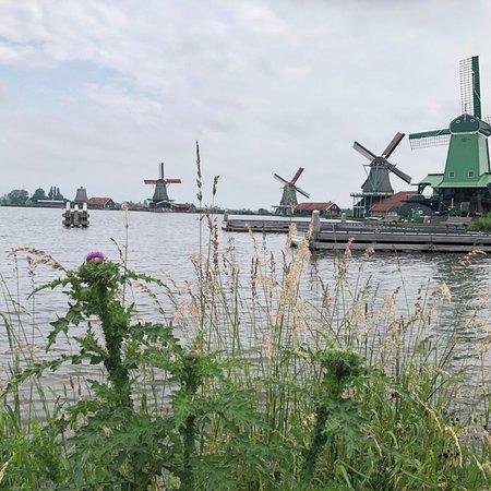 Tour to Zaanse Schans, Edam, Volendam and Marken ภาพถ่าย