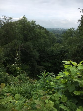 Selborne, UK: Stunning views from halfway up