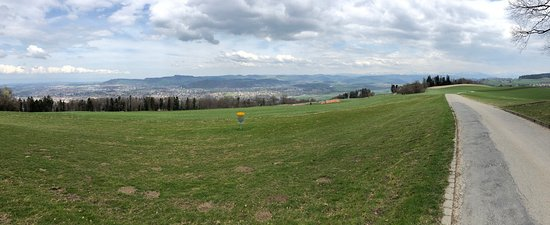 Gurten - Park im Grünen: there's the basket confirming there is frisbee golf here!