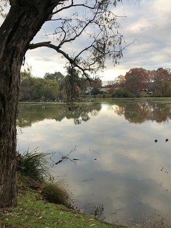 Meramie Motor Inn : Browns Lagoon Albury has an abundance of bird life