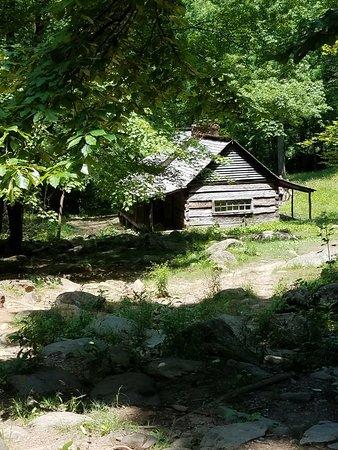 Historic Ogle Log Cabin : 20180605_124710_large.jpg