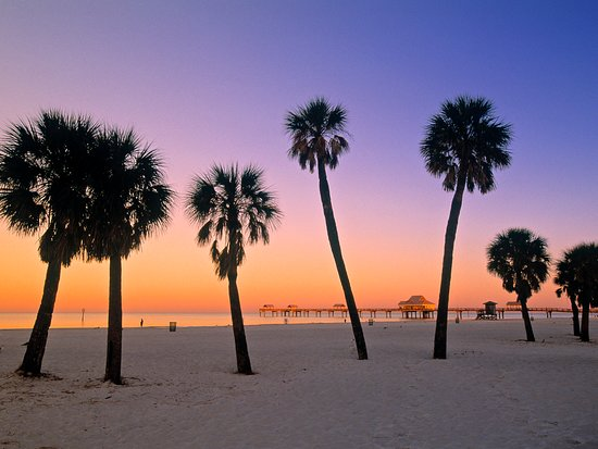 King's Pizza: Clearwater Beach Florida