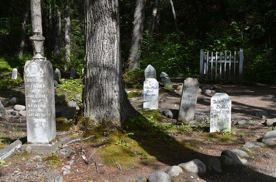 Gold Rush Cemetery照片