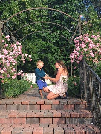 Bird House Inn and Gardens: photo5.jpg