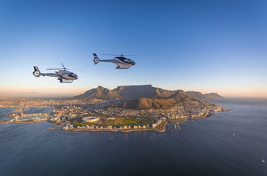 ケープタウン発、2つの海を遊覧するシーニック・ヘリコプター飛行ツアー