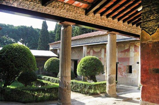 Excursão diurna às Ruínas de Pompeia...