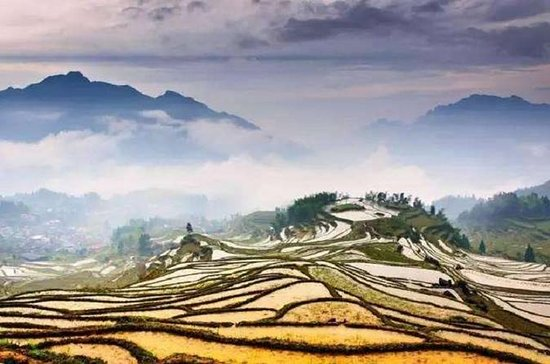 One Day Yunhe Rice Terrace...