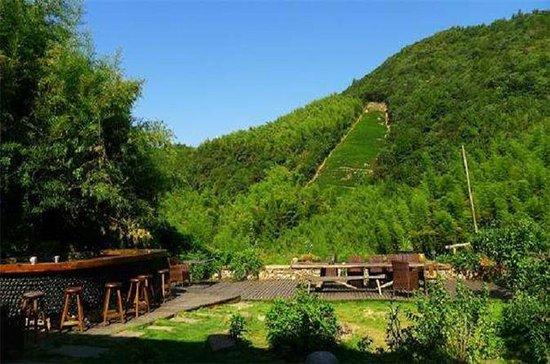 Two Days Mogan Mountain & Anji Bamboo...