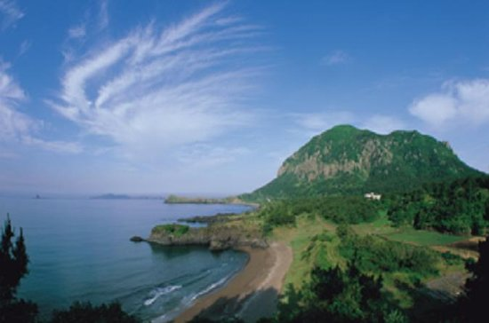 Jeju One Day Bus Tour Package (vest)