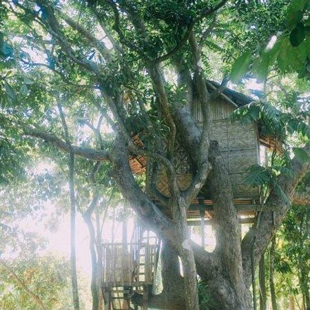 Canigao Island: photo1.jpg