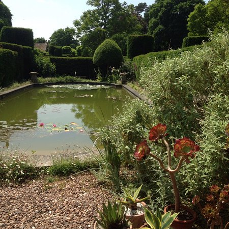 Cothay Manor: photo1.jpg