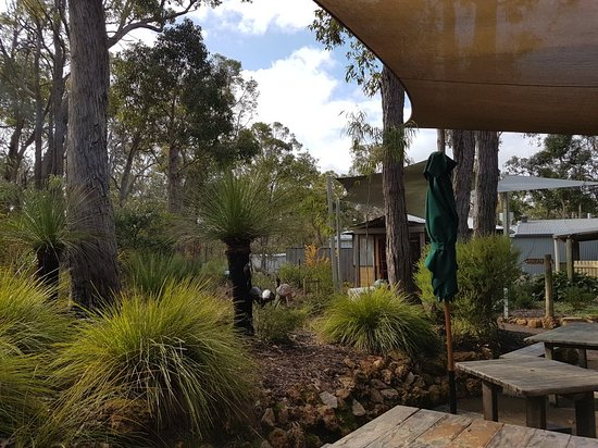 Quindalup, Australia: 20180613_140025_large.jpg