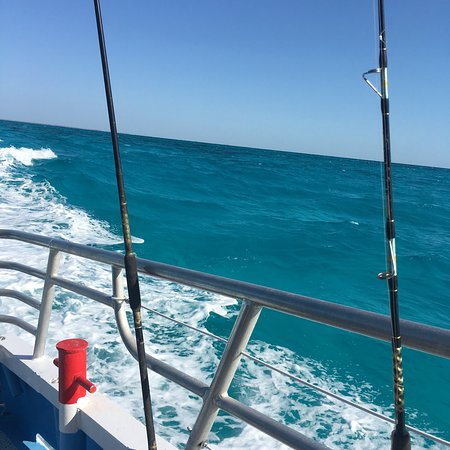 Sailors choice party fishing boat key largo 2018 ce qu for Key largo party boat fishing