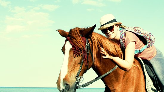 Horse Riding Hurghada: Amazing trip to sea on lovely horses of stable Horseriding Hurghada