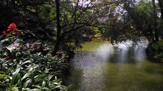 Liuhou Park