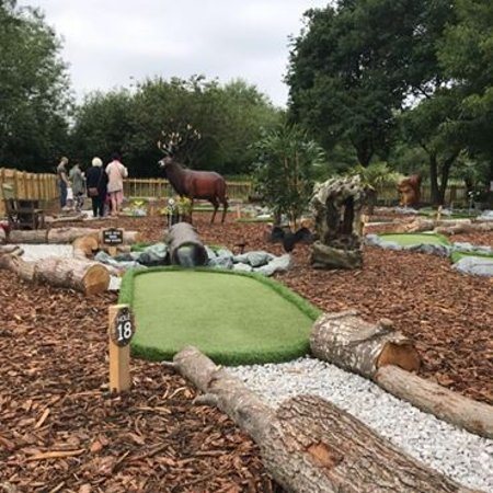 Hurst, UK: The 18th hole, can you get it through the log in one?