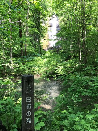Towada, Japan: 白布の滝!!