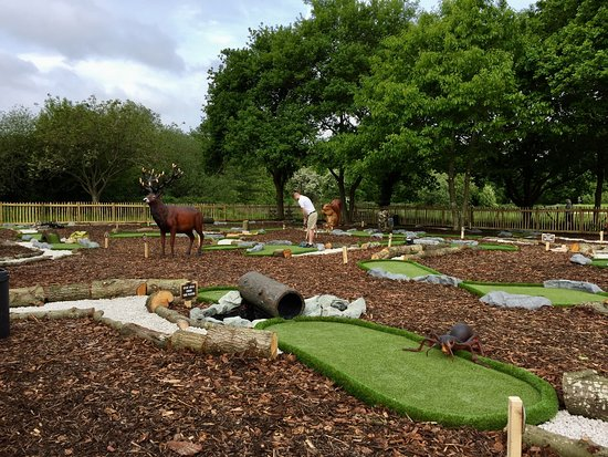 Dinton Adventure Golf