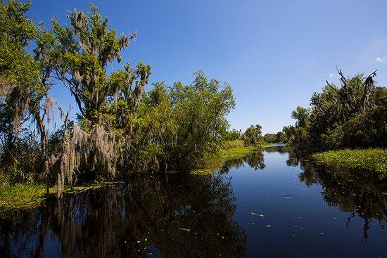 Louisiana's Cajun Bayou, Luizjana: Louisiana's Cajun Bayou