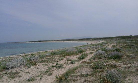 Maimoni Beach: SPIAGGIA