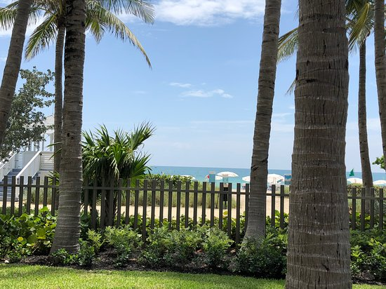 The St. Regis Bal Harbour Resort: VIEW FROM PROPERTY OVER BIKE PATH TO OCEAN
