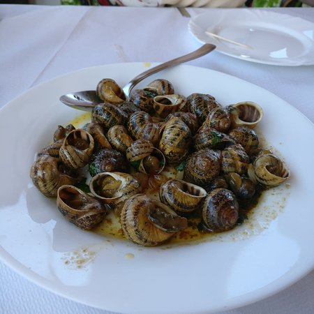 Taverna George: Snail Dish