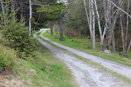 St. George's, Canada: roadway to cottages