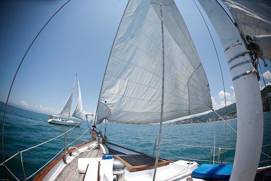 PV Sail