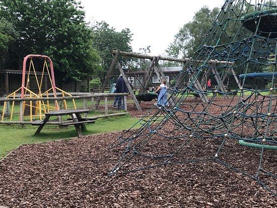 Monkey World: Play Area for children