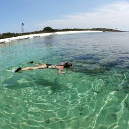 Los Santos Province, Panama: Snorkel en Isla Iguana