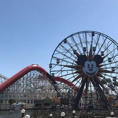 Disney California Serüveni: photo3.jpg