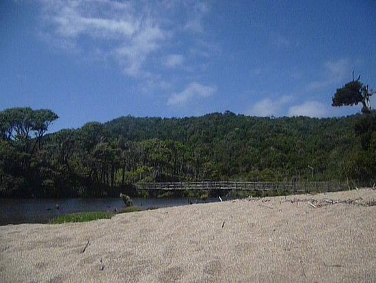 Cucao, Chile: Río Cole cole junto al bosque que lo rodea.