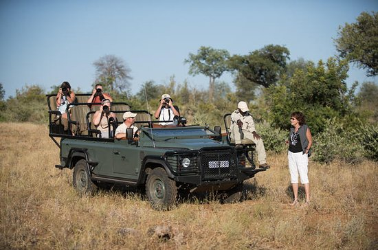 9-Day Privately Guided Best of Kruger...