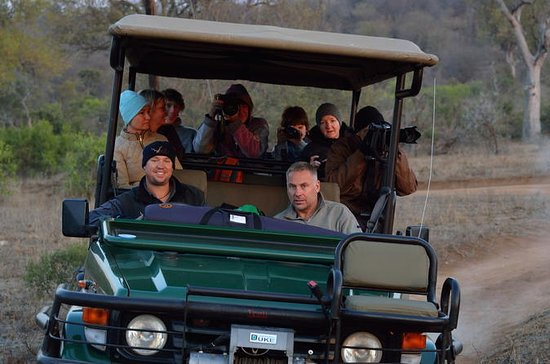 7-Day Privately Guided Greater Kruger ...