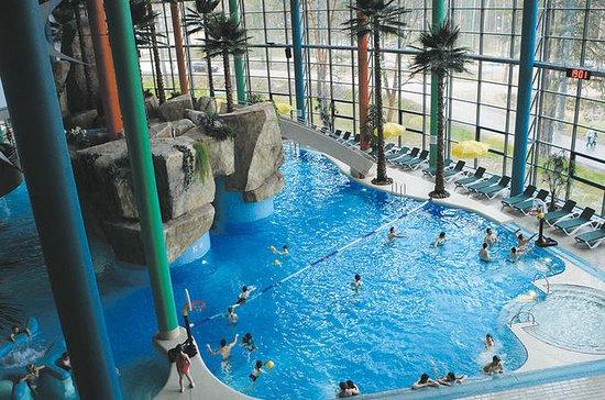 Druskininkai Aquapark Admission Ticket