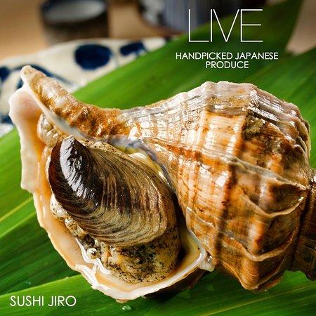 Sushi Jiro照片