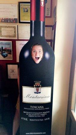 Casa Sola - Chianti Winery Picture