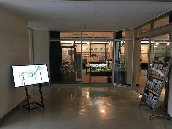 Shimane University Museum ASHIKARU
