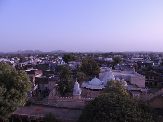 Ghānerao, Индия: Village view from roof top.......