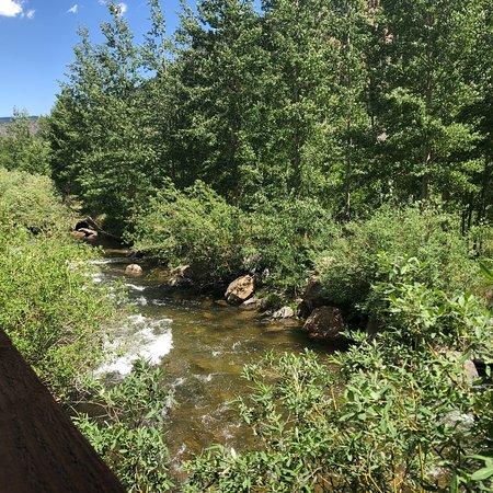 Bilde fra Cooper's on the Creek