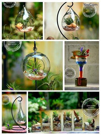 Muvattupuzha, Ινδία: Chris bottle Crafters indoor home garden