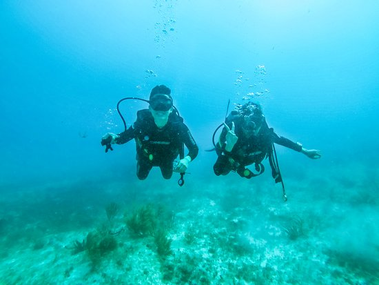 Freelance Scuba Service: Elia brought his go-pro and took some great photos for us during our dives