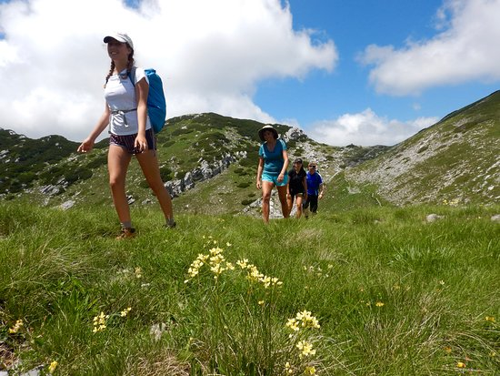 Molat Island, Croatia: June a great month for hiking.
