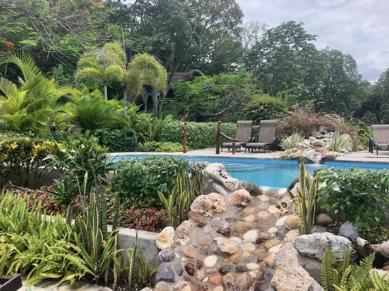 Landscaping Picture Of Hermosa Cove Jamaica S Villa Hotel