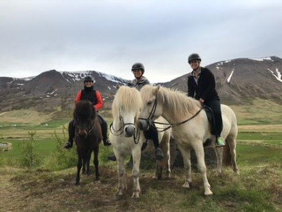 Skagafjordur, Islandia: Private tour with Loki