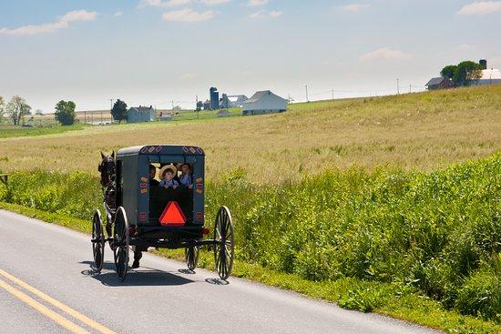 Lancaster, PA: Amish Horse & Buggy